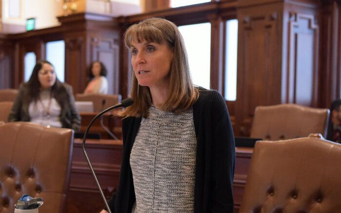 Illinois state Sen. Laura Fine, who was a member of the American Federation of Teachers, has made taking on the insurance ind