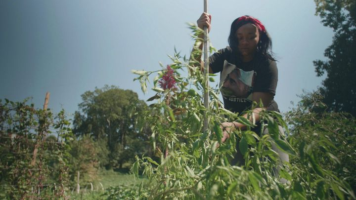 Formerly incarcerated teenagers and young adults are paid $15 an hour for their help on urban farms in Atlanta, Georgia, thro