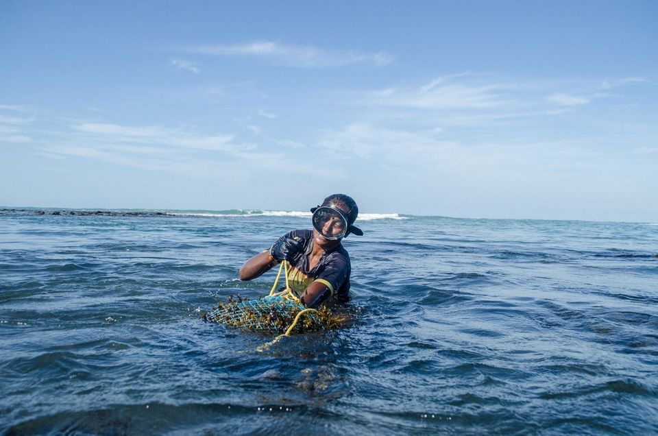 A. Mookupori pulling the net bag. Now 35, she has been diving for seaweed since she was eight years