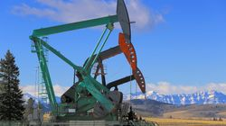 Alberta Oil Company Goes Bust, Leaving Up To 1,400 Orphaned