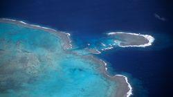 Une éruption volcanique aux Tonga fait naître une nouvelle île baptisée