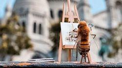Βee_nfluencer: Η πρώτη μέλισσα influencer στον