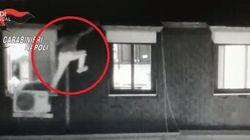 Il latitante prova la fuga sul tetto, il carabiniere lo bracca e lo arresta