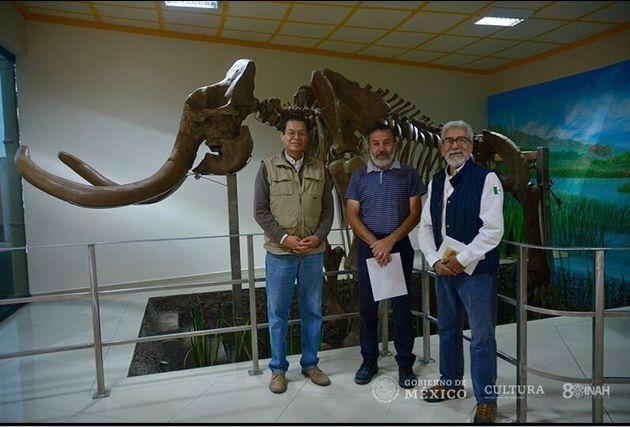 Αρχαιολόγοι στο Μεξικό έκαναν την μεγαλύτερη μέχρι σήμερα ανακάλυψη σκελετών