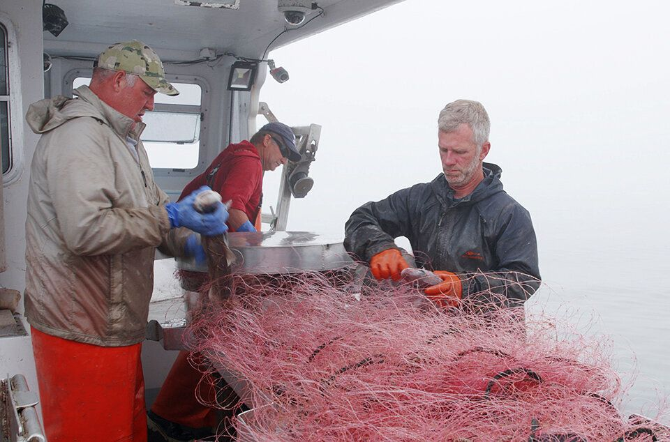 Fishermen prepare a net while shrimping off Maine's coast in Cundy