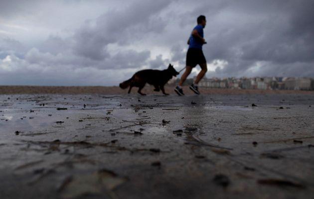 Un hombre corre con su perro por el paseo marítimo de A