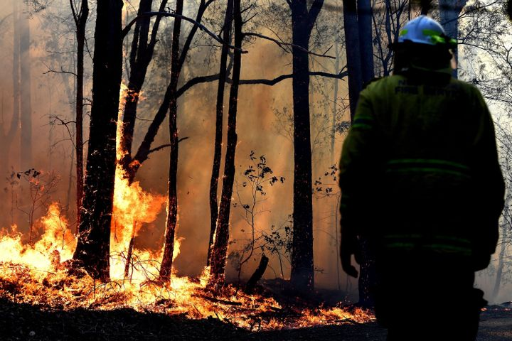 A firefighter works as a bushfire, believed to have been sparked by a lightning strike that has ravaged an area of over 2,000 hectares in northern New South Wales state, burns in Port Macquarie.