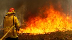 State Of Emergency Declared Across Australia's East Coast As 'Catastrophic' Fires