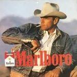 L'emblématique cow-boy de Marlboro, qui n'a jamais fumé, est