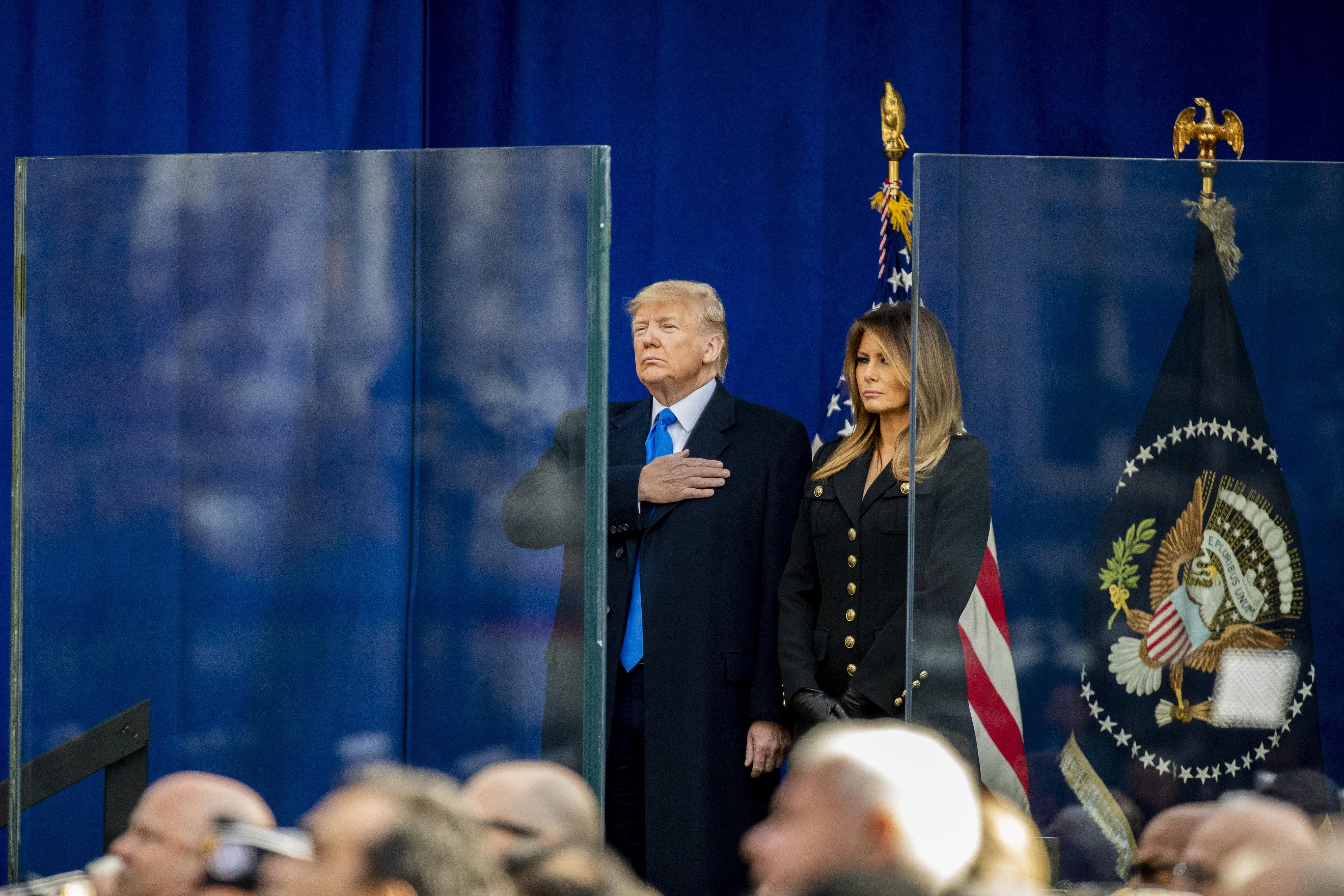 Jim Carrey Cartoon Rips 'Draft Dodger' Trump On Veterans Day
