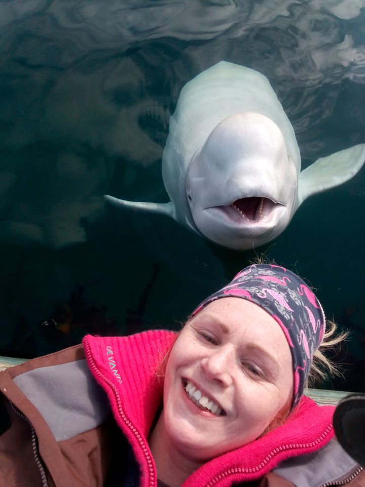 Linn Saether poses with Hvaldimir days after a fisherman removed a harness with a camera mount from the beluga whale, in Tufj