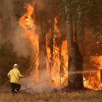 Fire Authorities Urge QLD Residents To