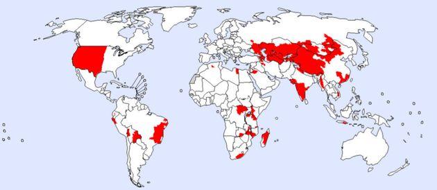전 세계 페스트 발생지역 분포(2016년 3월