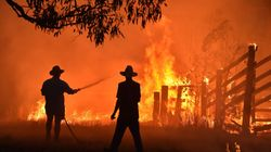 Más de 150 incendios forestales continúan activos en el este de Australia