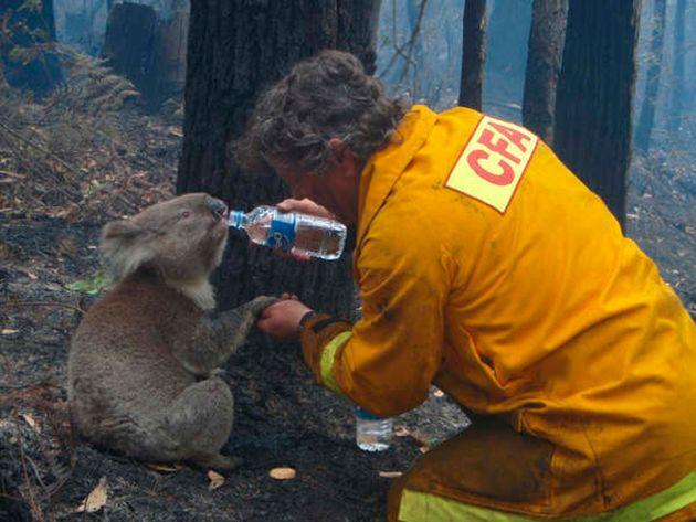 Πυροσβέστης δίνει νερό...