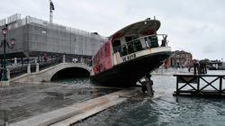 베네치아에 들이닥친 조수는 정말 기후변화 때문에