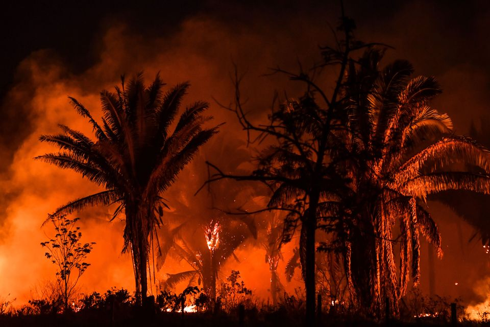 View of fire from the BR163 highway, near Itaituba, Para state, Brazil, in the Amazon rainforest, on...