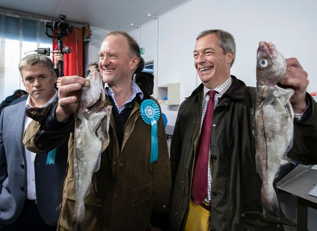 Brexit Party MEP Urges His Own Candidates To Stand Aside For Tories In Lo