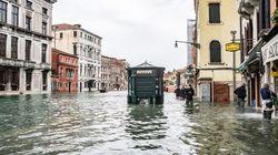 Venezia sommersa, polemiche sull'uso del Mose. San Marco chiusa, serrande abbassate, secchi e