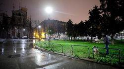 Feto gettato in un'aiuola a Torino: