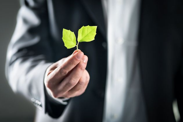 I 6 pilastri della sostenibilità che fanno bene alle aziende e al