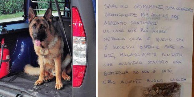 """""""Addio Rocky"""". Spacciatori scrivono una lettera per il cane antidroga morto prematuramente"""