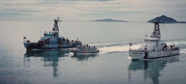 Tout au long du film, le réalisateur suit notamment les militants de Sea Shepherd, une ONG qui protège...