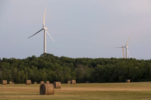 Wind turbines at the White Pine Wind project can be seen near a hay field in Milford, Ont., on July 12,