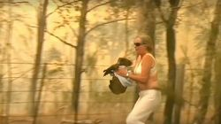 The Dramatic Moment A Woman Saved A Scorched Koala From Bushfires With The Shirt Off Her Own