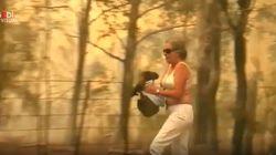 Donna corre nel bosco in fiamme per mettere in salvo un koala