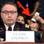 엄숙하고 진지한 트럼프 탄핵조사 청문회장에서 의외의 '영웅'이