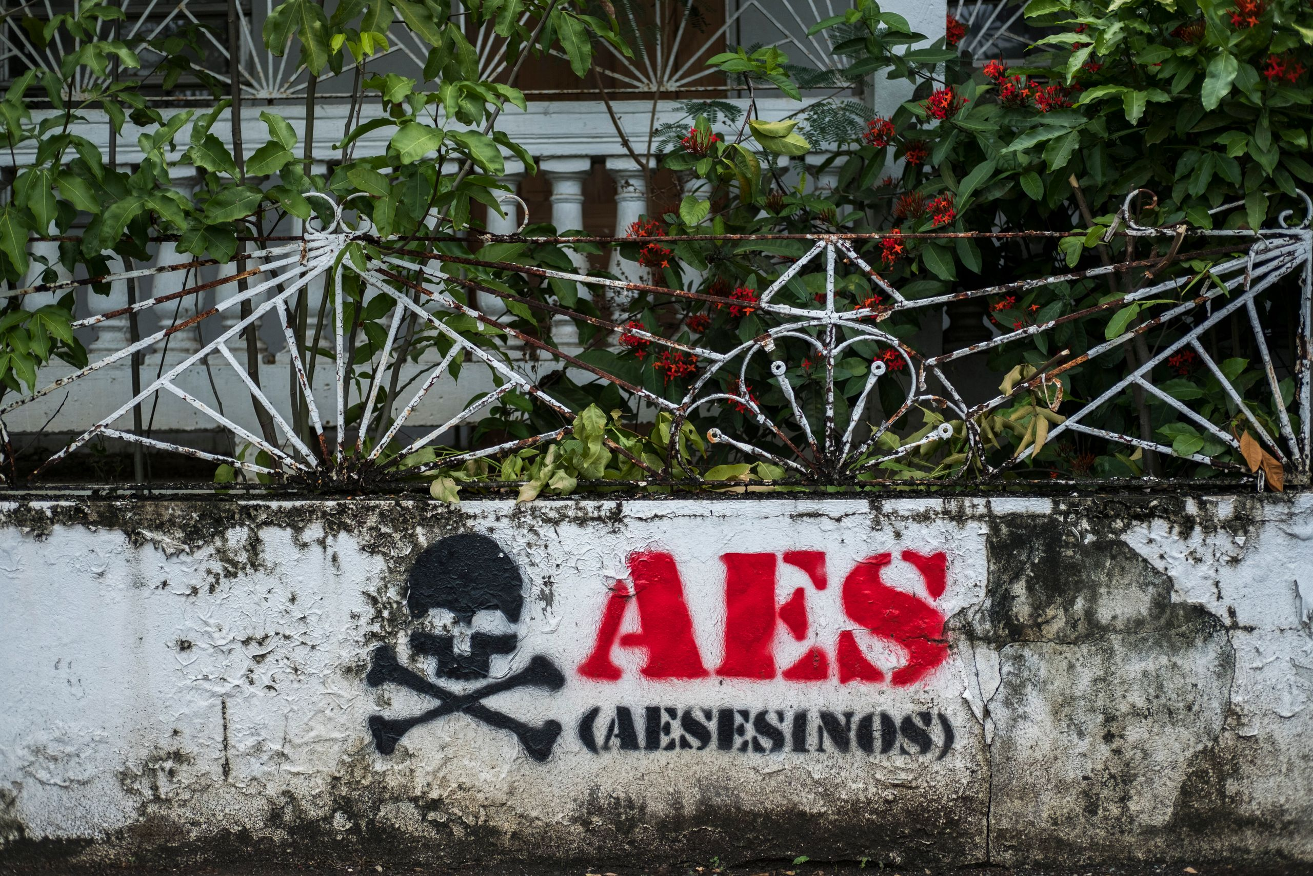 "Graffiti reads ""AES assassins"" at an abandoned house in Guayama."