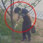 경의선 숲길 고양이 죽인 남성에게 이례적으로 징역형이