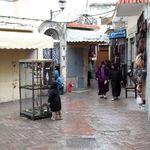 Alerte météo: Fortes pluies et rafales de vents dans le nord du Maroc