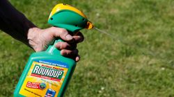 Canadians Sue Monsanto Over Allegedly Cancerous Roundup