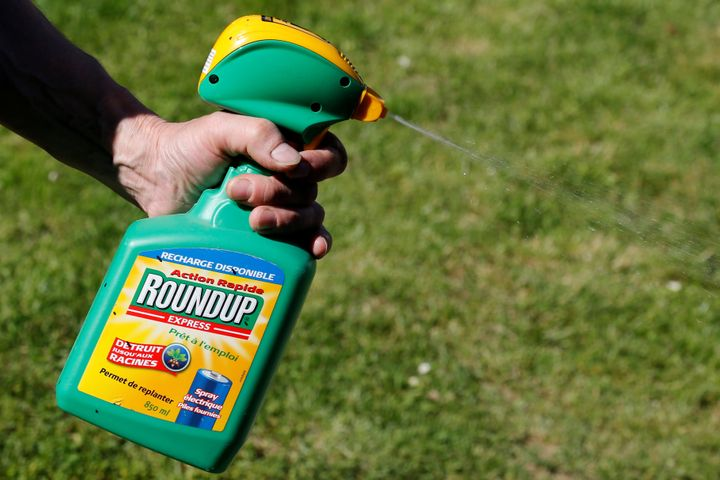 A man uses a Monsanto's Roundup weedkiller spray containing glyphosate in a garden in Bordeaux, France, June 1, 2019.
