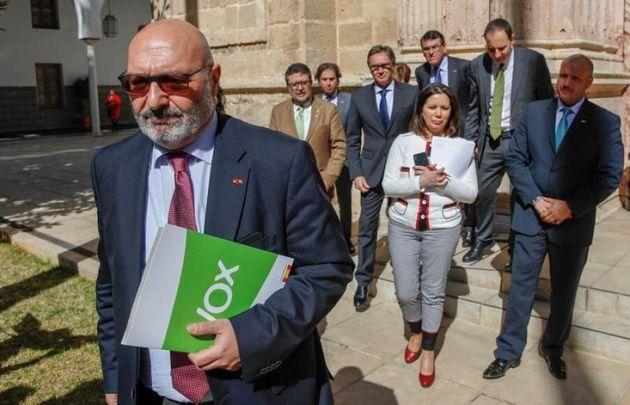 El portavoz parlamentario de Vox en Andalucía, Alejandro