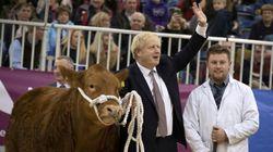 Η προεκλογική εκστρατεία του Μπόρις Τζόνσον περιλαμβάνει επίσκεψη σε ζωοπανήγυρη και «κουρά»