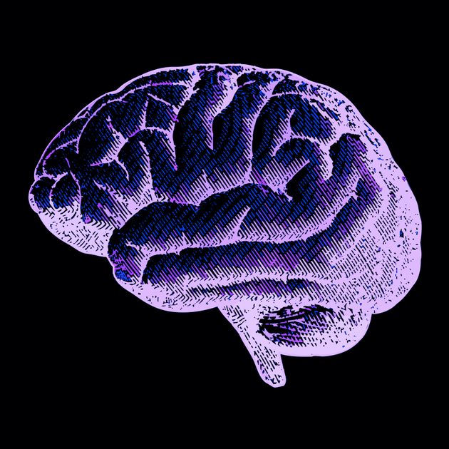 Violet drawing brain illustration isolated on a black
