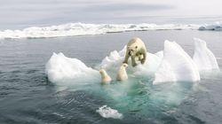 """'El HuffPost' dejará de utilizar el término """"cambio climático"""" para referirse a la """"crisis"""