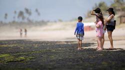 9 perguntas sobre o óleo na costa brasileira que ainda aguardam