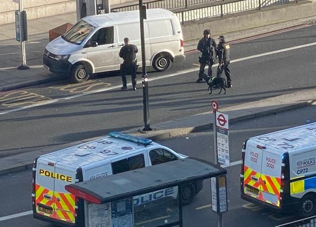 Sniffer dogs and police near a white van on London