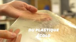 Ce plastique biodégradable est fait d'écailles de