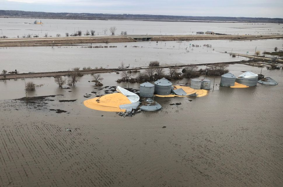 The contents of grain silos that burst from flood damage are shown in Fremont County, Iowa, March 29, 2019. The damage from f