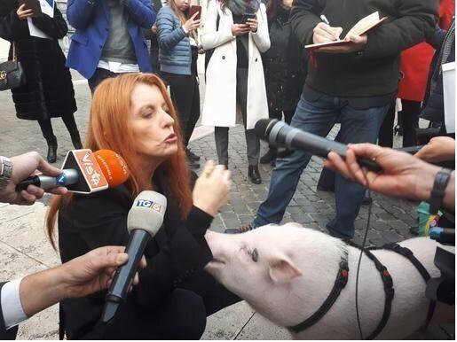Michela Brambilla con un maialino davanti a