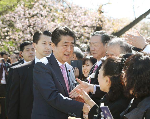 桜 を 見る 会 何 が 問題