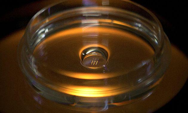 Τα πρώτα γενετικά τροποποιημένα μωρά ίσως έχουν υποστεί ανεπιθύμητες μεταλλάξεις στο DNA