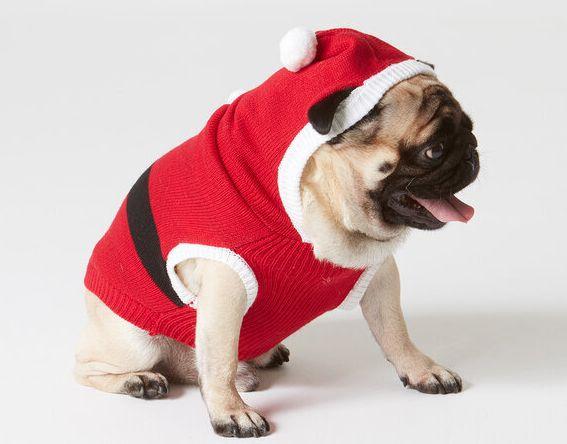 "<a href=""https://fave.co/2RxaJ7J"" target=""_blank"" role=""link"" rel=""nofollow"" data-ylk=""subsec:paragraph;itc:0;cpos:__RAPID_INDEX__;pos:__RAPID_SUBINDEX__;elm:context_link"">Red Santa Dog Jumper, Sainsbury's Tu,</a> £14.00"