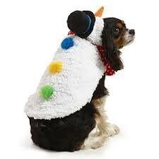 "<a href=""https://fave.co/2RodQP0"" target=""_blank"" role=""link"" rel=""nofollow"" data-ylk=""subsec:paragraph;itc:0;cpos:__RAPID_INDEX__;pos:__RAPID_SUBINDEX__;elm:context_link"">Navy Santa Print Dog Jumper, Sainsbury's Tu,</a> £14.00"
