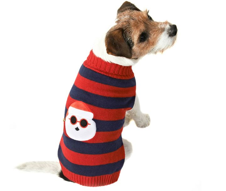 "<a href=""https://fave.co/2qrnzJq"" target=""_blank"" role=""link"" rel=""nofollow"" data-ylk=""subsec:paragraph;itc:0;cpos:__RAPID_INDEX__;pos:__RAPID_SUBINDEX__;elm:context_link"">Santa Light-Up Christmas Dog Jumper, B&M Stores,</a> £5.00"